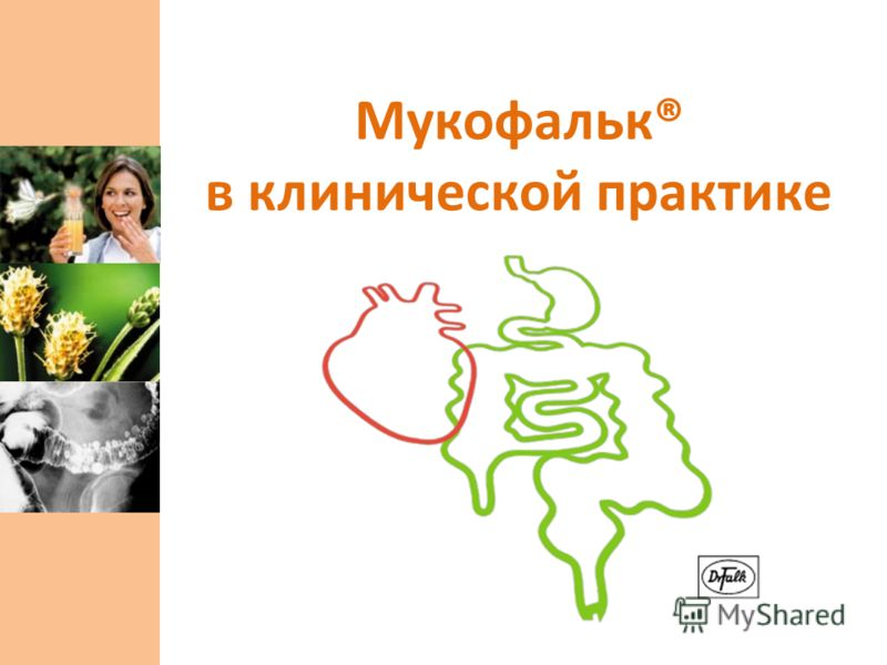 Мукофальк® в клинической практике