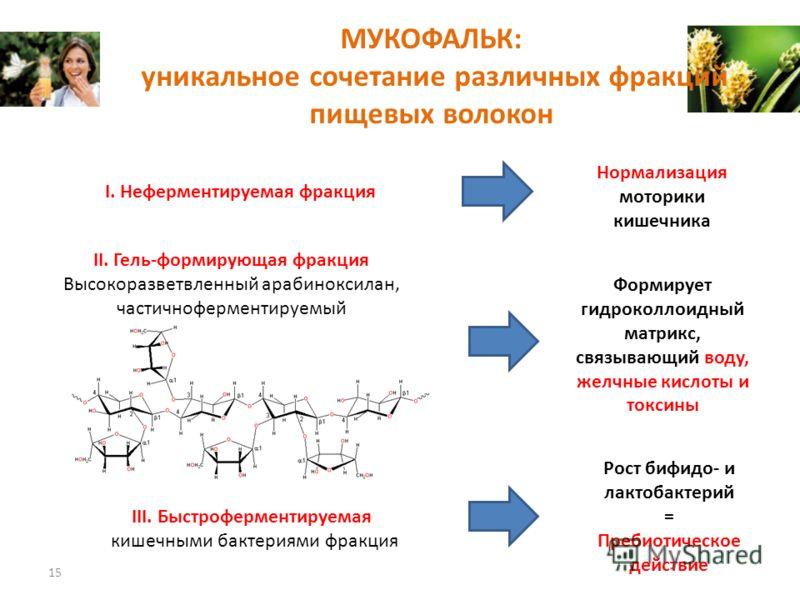 МУКОФАЛЬК: уникальное сочетание различных фракций пищевых волокон 15 II. Гель-формирующая фракция Высокоразветвленный арабиноксилан, частичноферментируемый III. Быстроферментируемая кишечными бактериями фракция Рост бифидо- и лактобактерий = Пребиоти
