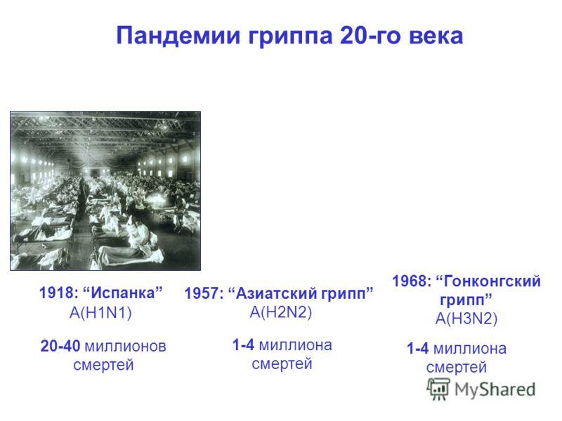 Пандемии гриппа 20-го века 1918: Испанка A(H1N1) 1957: Азиатский грипп A(H2N2) 1968: Гонконгский грипп A(H3N2) 20-40 миллионов смертей 1-4 миллиона смертей Фотографии адаптированы из US National Museum of Health and Medicine Kamps et al. Influenza 20