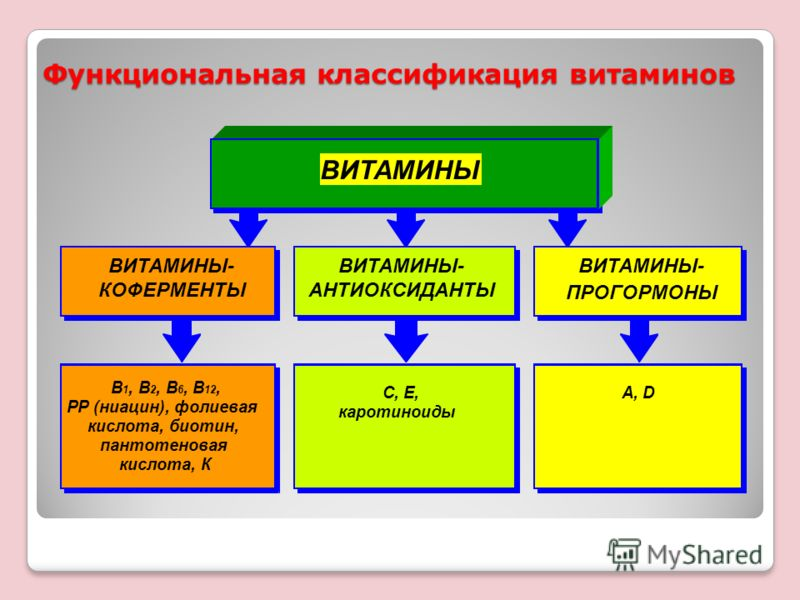 Функциональная классификация витаминов В 1, В 2, В 6, В 12, РР (ниацин), фолиевая кислота, биотин, пантотеновая кислота, К А, D ВИТАМИНЫ ВИТАМИНЫ- КОФЕРМЕНТЫ С, Е, каротиноиды ВИТАМИНЫ- АНТИОКСИДАНТЫ ВИТАМИНЫ- ПРОГОРМОНЫ
