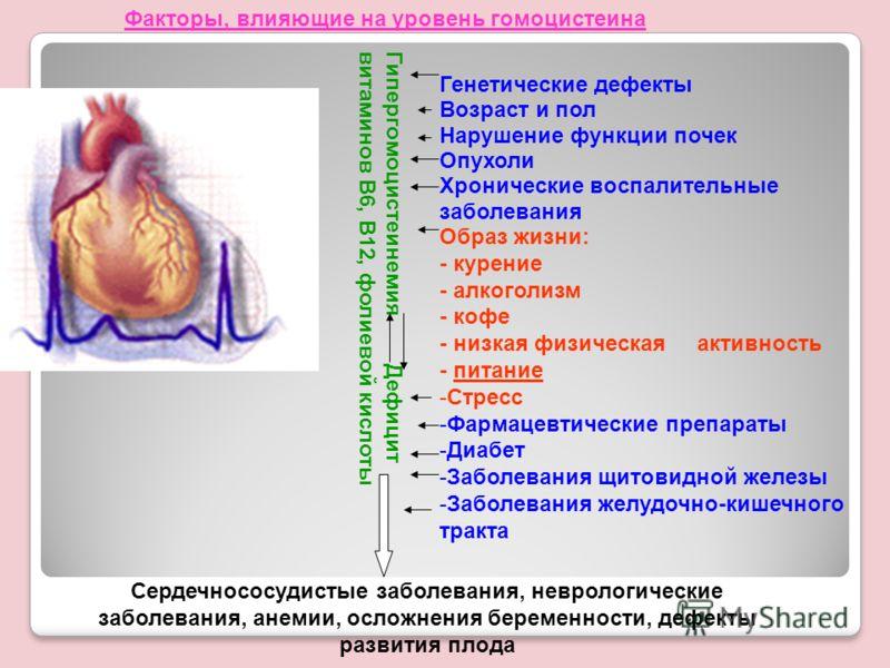 Генетические дефекты Возраст и пол Нарушение функции почек Опухоли Хронические воспалительные заболевания Образ жизни: - курение - алкоголизм - кофе - низкая физическая активность - питание -Стресс -Фармацевтические препараты -Диабет -Заболевания щит