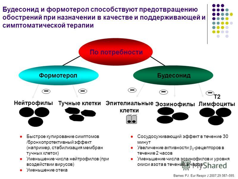 Быстрое купирование симптомов /бронхопротективный эффект (например, стабилизация мембран тучных клеток) Уменьшение числа нейтрофилов (при воздействии вирусов) Уменьшение отека Нейтрофилы Тучные клетки Эпителиальные клетки Эозинофилы T2 Лимфоциты Форм