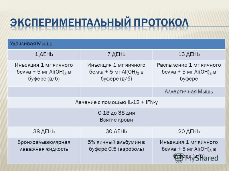 Удачливая Мышь 1 ДЕНЬ7 ДЕНЬ13 ДЕНЬ Инъекция 1 мг яичного белка + 5 мг Al(OH) 3 в буфере (в/б) Распыление 1 мг яичного белка + 5 мг Al(OH) 3 в буфере Аллергичная Мышь Лечение с помощью IL-12 + IFN-γ С 18 до 38 дня Взятие крови 38 ДЕНЬ30 ДЕНЬ20 ДЕНЬ Бр