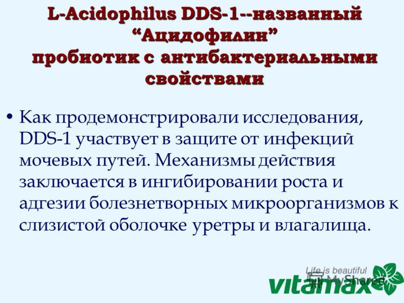 L-Acidophilus DDS-1--названный Ацидофилин пробиотик с антибактериальными свойствами Как продемонстрировали исследования, DDS-1 участвует в защите от инфекций мочевых путей. Механизмы действия заключается в ингибировании роста и адгезии болезнетворных
