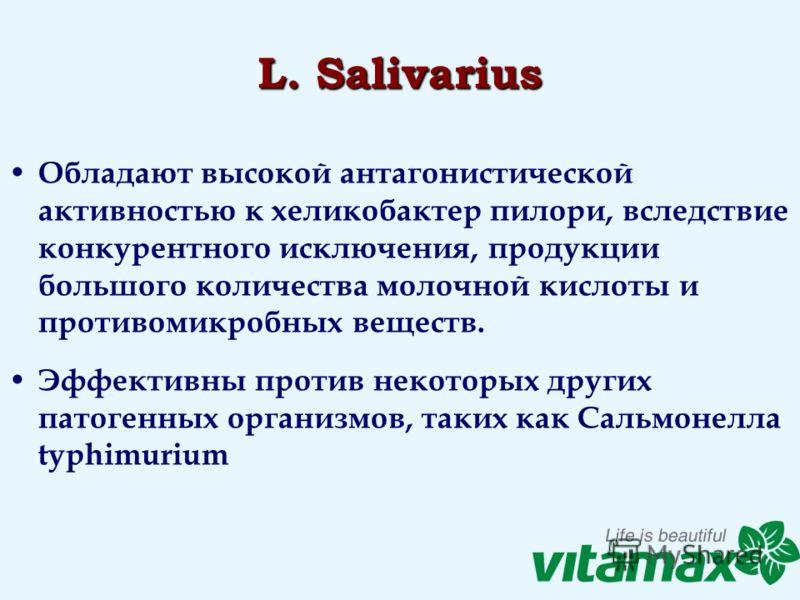 L. Salivarius Обладают высокой антагонистической активностью к хеликобактер пилори, вследствие конкурентного исключения, продукции большого количества молочной кислоты и противомикробных веществ. Эффективны против некоторых других патогенных организм
