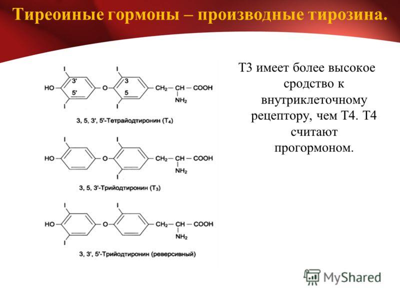 Тиреоиные гормоны – производные тирозина. Т3 имеет более высокое сродство к внутриклеточному рецептору, чем Т4. Т4 считают прогормоном.