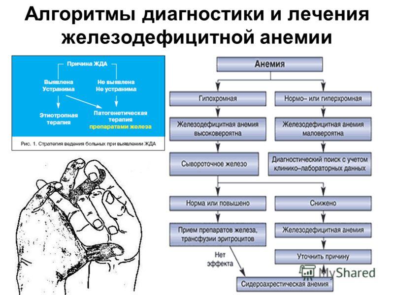 График работы врачей поликлиники 6 воронеж