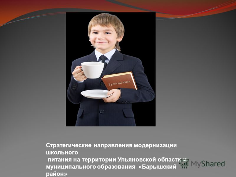 Стратегические направления модернизации школьного питания на территории Ульяновской области и муниципального образования «Барышский район»