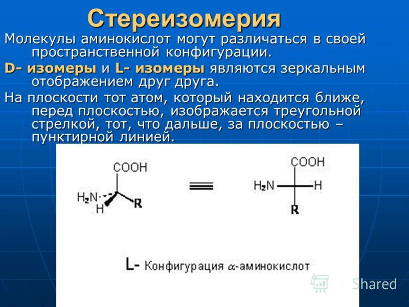 СтереизомерияМолекулы аминокислот могут различаться в своей пространственной конфигурации. D- изомеры и L- изомеры являются зеркальным отображением друг друга. На плоскости тот атом, который находится ближе, перед плоскостью, изображается треугольной
