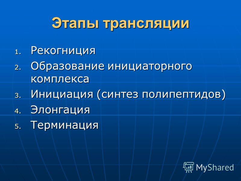 Этапы трансляции 1. Рекогниция 2. Образование инициаторного комплекса 3. Инициация (синтез полипептидов) 4. Элонгация 5. Терминация
