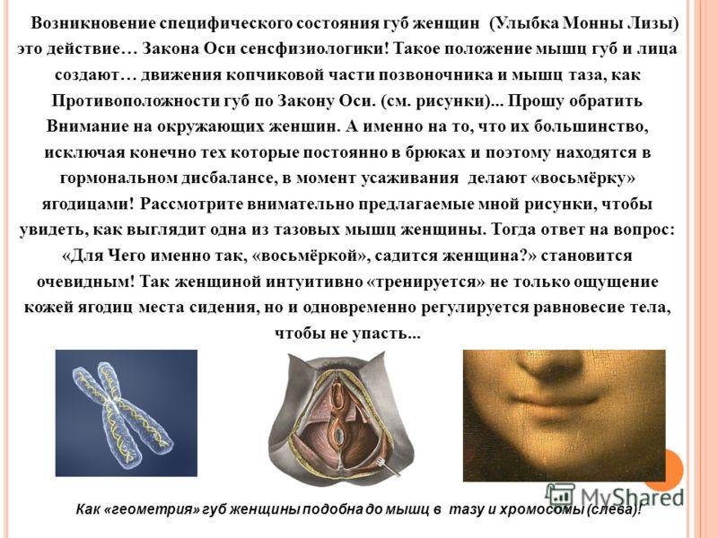 Возникновение специфического состояния губ женщин (Улыбка Монны Лизы) это действие… Закона Оси сенсфизиологики! Такое положение мышц губ и лица создают… движения копчиковой части позвоночника и мышц таза, как Противоположности губ по Закону Оси. (см.