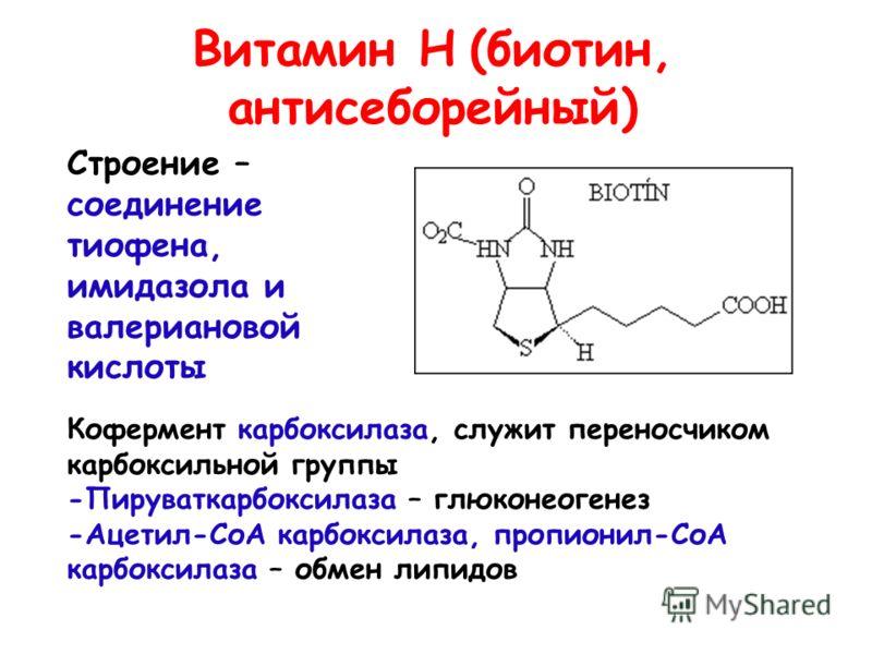 Витамин Н (биотин, антисеборейный) Строение – соединение тиофена, имидазола и валериановой кислоты Кофермент карбоксилаза, служит переносчиком карбоксильной группы -Пируваткарбоксилаза – глюконеогенез -Ацетил-СоА карбоксилаза, пропионил-СоА карбоксил