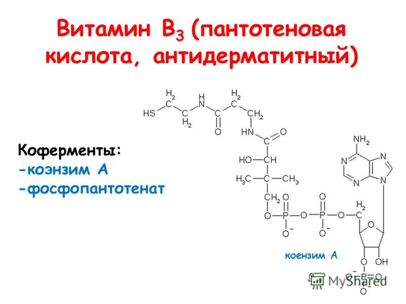 Витамин В 3 (пантотеновая кислота, антидерматитный) Коферменты: -ко э нзим А -фосфопантотенат коензим А