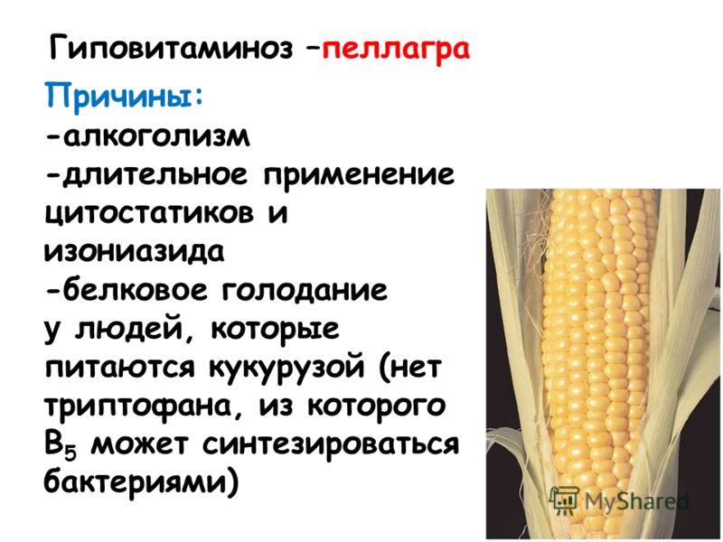 Причины: -алкоголизм -длительное применение цитостатиков и изониазида -белков о е голодание у людей, которые питаются кукурузой (нет триптофана, из которого В 5 может синтезироваться бактериями) Гиповитаминоз –пеллагра