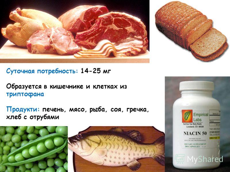Суточная потребность: 14-25 мг Образуется в кишечнике и клетках из триптофана Продукти: печень, мясо, рыба, соя, гречка, хлеб с отрубями