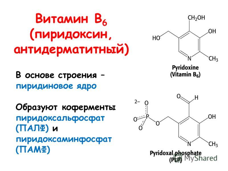 Витамин В 6 (пиридоксин, антидерматитный) В основе строения – пиридиновое ядро Образуют коферменты пиридоксальфосфат (ПАЛФ) и пиридоксаминфосфат (ПАМФ)