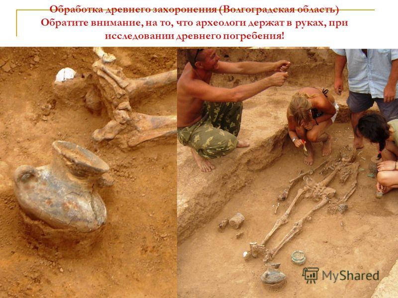 Обработка древнего захоронения (Волгоградская область) Обратите внимание, на то, что археологи держат в руках, при исследовании древнего погребения!
