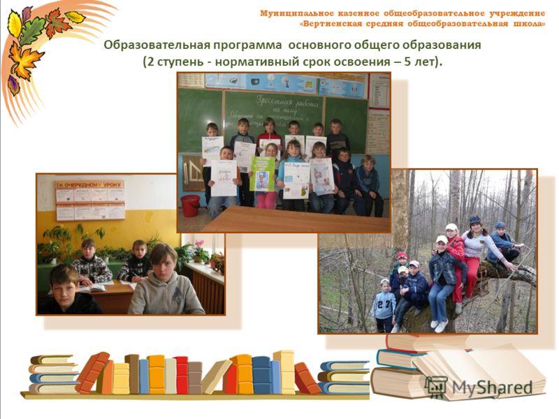Образовательная программа основного общего образования (2 ступень - нормативный срок освоения – 5 лет).