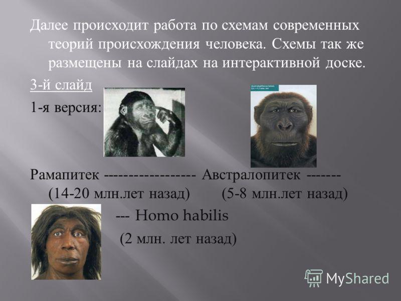 Далее происходит работа по схемам современных теорий происхождения человека. Схемы так же размещены на слайдах на интерактивной доске. 3- й слайд 1- я версия : Рамапитек ------------------ Австралопитек ------- (14-20 млн. лет назад ) (5-8 млн. лет н