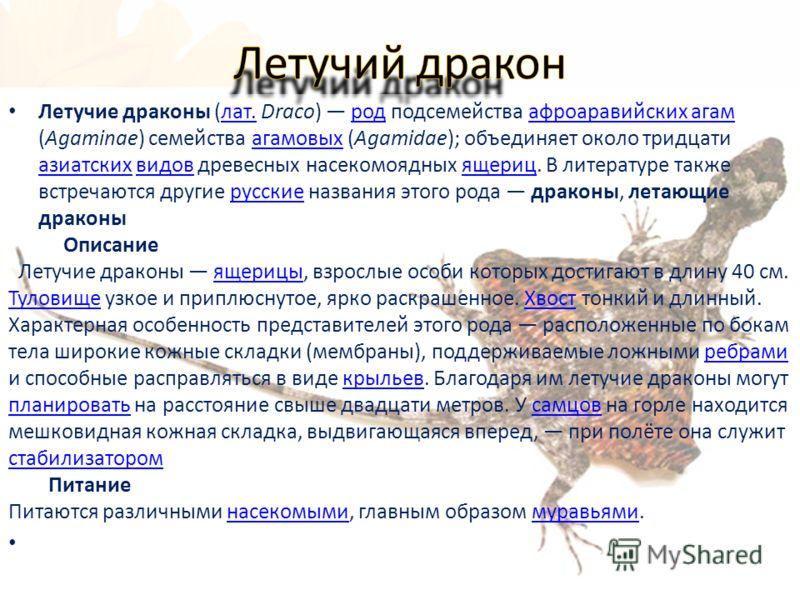 Летучие драконы (лат. Draco) род подсемейства афроаравийских агам (Agaminae) семейства агамовых (Agamidae); объединяет около тридцати азиатских видов древесных насекомоядных ящериц. В литературе также встречаются другие русские названия этого рода др