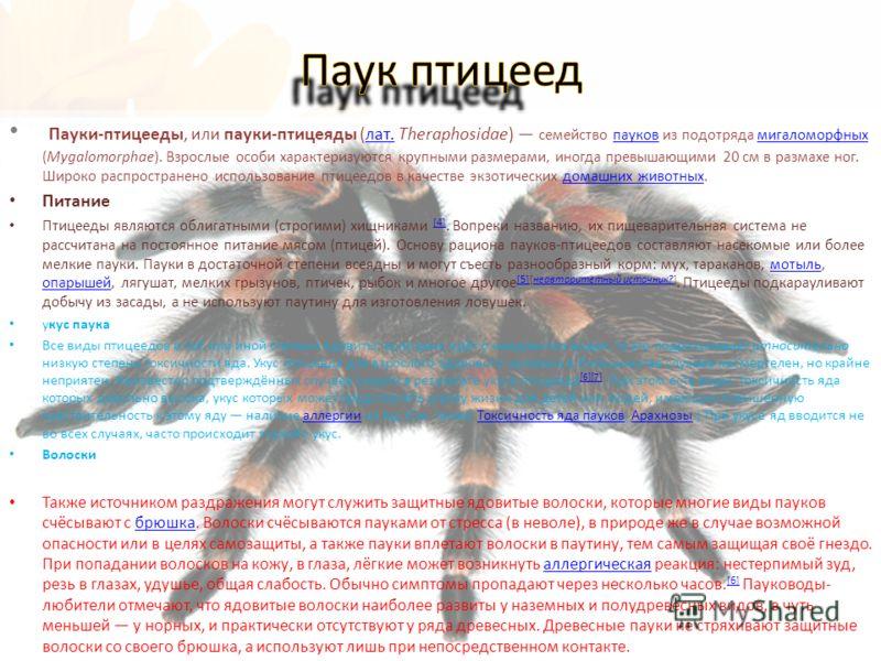 Пауки-птицееды, или пауки-птицеяды (лат. Theraphosidae) семейство пауков из подотряда мигаломорфных (Mygalomorphae). Взрослые особи характеризуются крупными размерами, иногда превышающими 20 см в размахе ног. Широко распространено использование птице