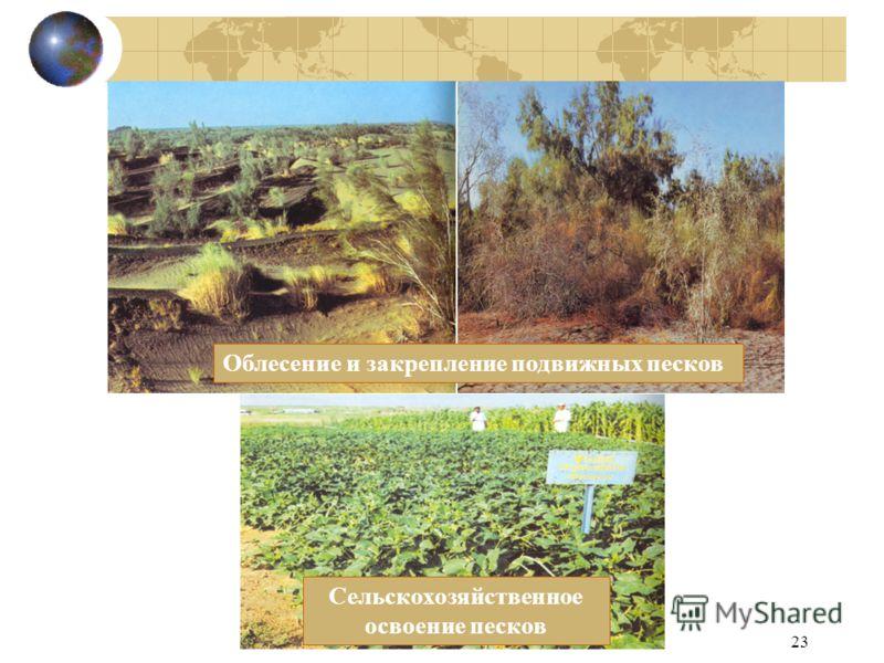23 Облесение и закрепление подвижных песков Сельскохозяйственное освоение песков