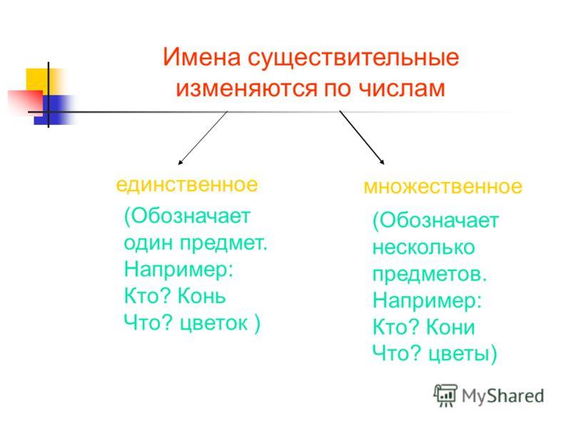 Имена существительные изменяются по числам единственное множественное (Обозначает один предмет. Например: Кто? Конь Что? цветок ) (Обозначает несколько предметов. Например: Кто? Кони Что? цветы)