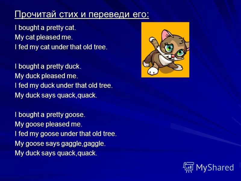 Прочитай стих и переведи его: I bought a pretty cat. My cat pleased me. I fed my cat under that old tree. I bought a pretty duck. My duck pleased me. I fed my duck under that old tree. My duck says quack,quack. I bought a pretty goose. My goose pleas