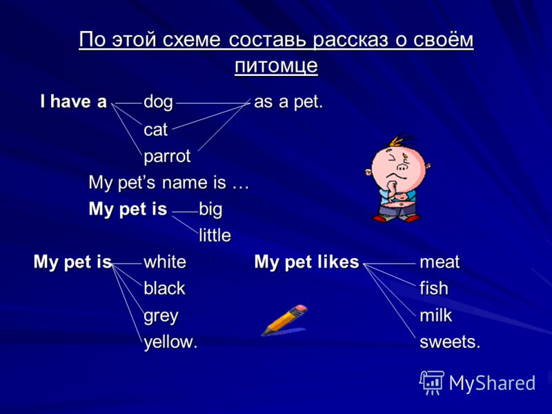По этой схеме составь рассказ о своём питомце I have adogas a pet. I have adogas a pet.catparrot My pets name is … My pet isbig little My pet iswhiteMy pet likesmeat blackfish greymilk yellow.sweets.