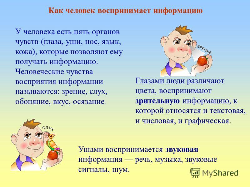 Как человек воспринимает информацию У человека есть пять органов чувств (глаза, уши, нос, язык, кожа), которые позволяют ему получать информацию. Человеческие чувства восприятия информации называются: зрение, слух, обоняние, вкус, осязание. Глазами л