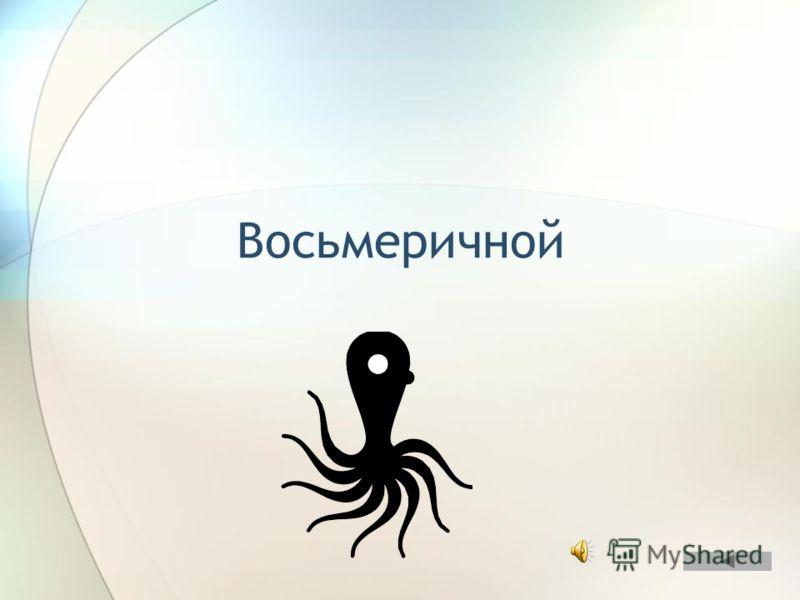 Если бы осьминоги умели считать, то какой бы системой счисления они, скорее всего, пользовались? ОТВЕТ
