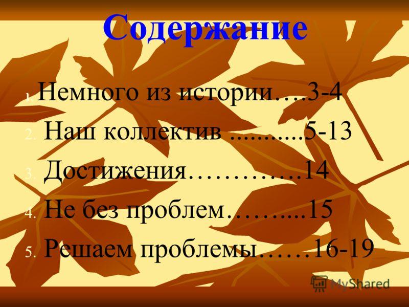 Содержание 1. 1. Немного из истории….3-4 2. 2. Наш коллектив...........5-13 3. 3. Достижения………….14 4. 4. Не без проблем……....15 5. 5. Решаем проблемы……16-19