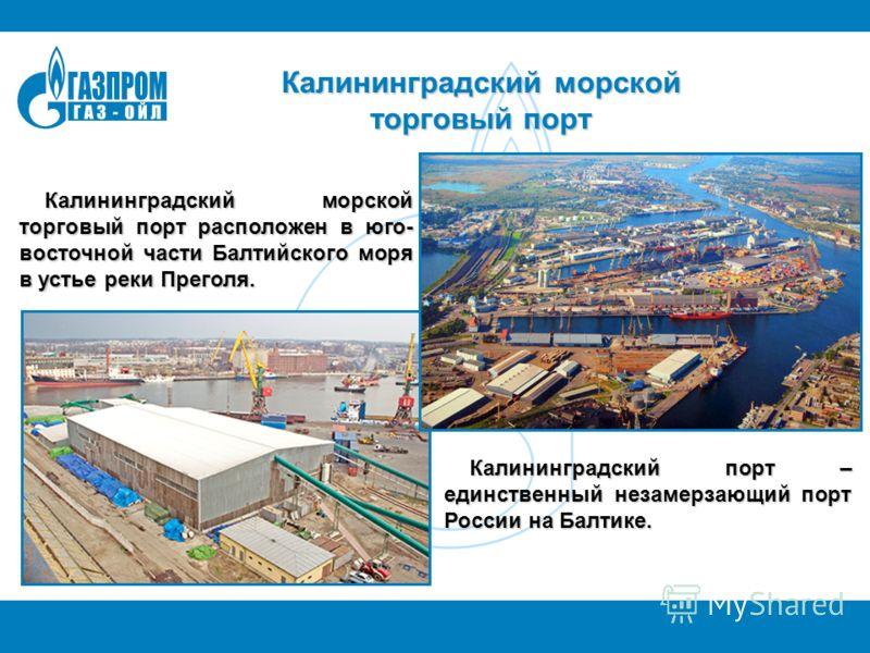 Калининградский морской торговый порт Калининградский морской торговый порт расположен в юго- восточной части Балтийского моря в устье реки Преголя. Калининградский порт – единственный незамерзающий порт России на Балтике.