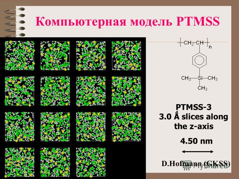 Компьютерная модель PTMSS PTMSS-3 3.0 Ǻ slices along the z-axis 4.50 nm D.Hofmann (GKSS)