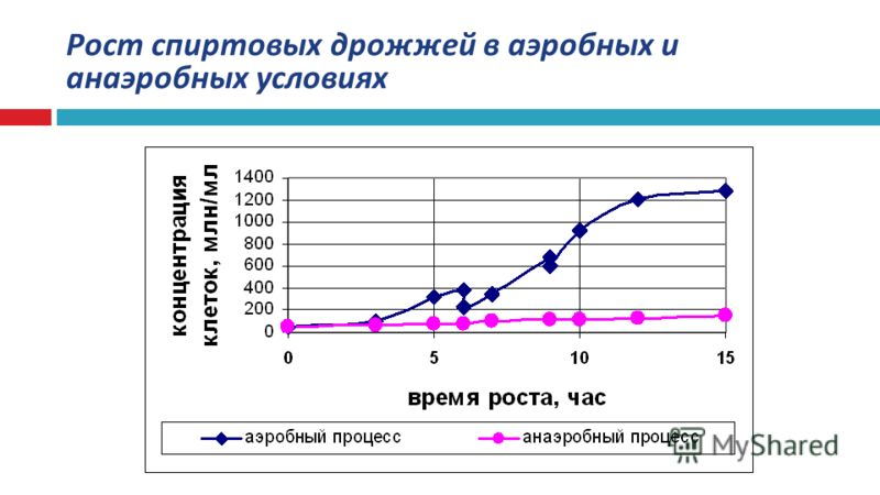 Рост спиртовых дрожжей в аэробных и анаэробных условиях