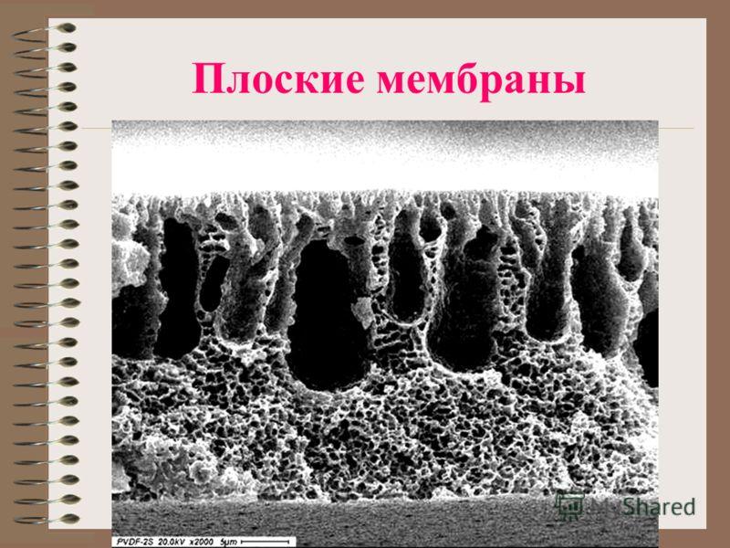 Плоские мембраны