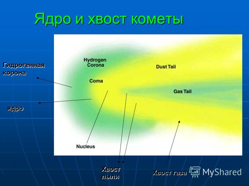 Ядро и хвост кометы Гидрогенная корона Хвост газа Хвост пыли ядро