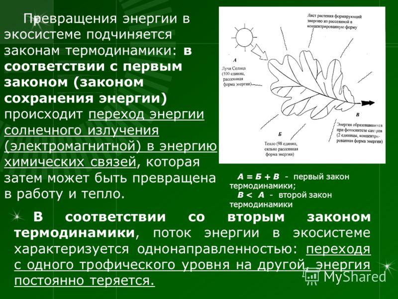 Превращения энергии в экосистеме подчиняется законам термодинамики: в соответствии с первым законом (законом сохранения энергии) происходит переход энергии солнечного излучения (электромагнитной) в энергию химических связей, которая затем может быть
