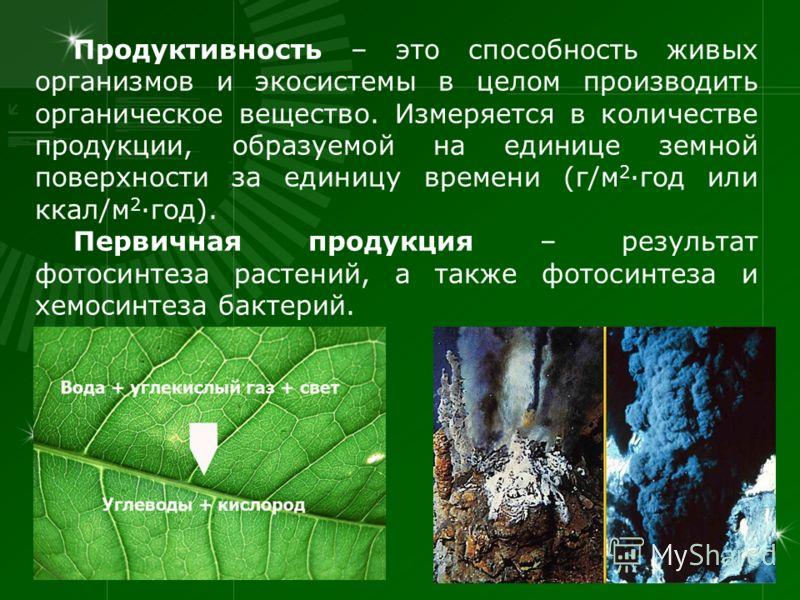 Продуктивность – это способность живых организмов и экосистемы в целом производить органическое вещество. Измеряется в количестве продукции, образуемой на единице земной поверхности за единицу времени (г/м 2 ·год или ккал/м 2 ·год). Первичная продукц