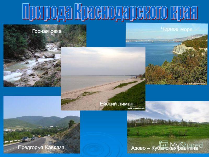 Горная река Черное море Азово – Кубанская равнина Ейский лиман Предгорья Кавказа