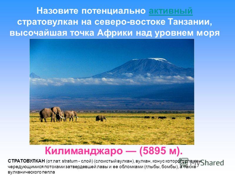 Килиманджаро (5895 м). Назовите потенциально активный стратовулкан на северо-востоке Танзании, высочайшая точка Африки над уровнем моряактивный СТРАТОВУЛКАН (от лат. stratum - слой) (слоистый вулкан), вулкан, конус которого сложен чередующимися поток