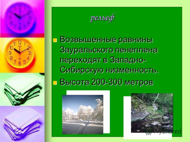 рельеф рельеф Возвышенные равнины Зауральского пенеплена переходят в Западно- Сибирскую низменность. Возвышенные равнины Зауральского пенеплена переходят в Западно- Сибирскую низменность. Высота 200-300 метров Высота 200-300 метров