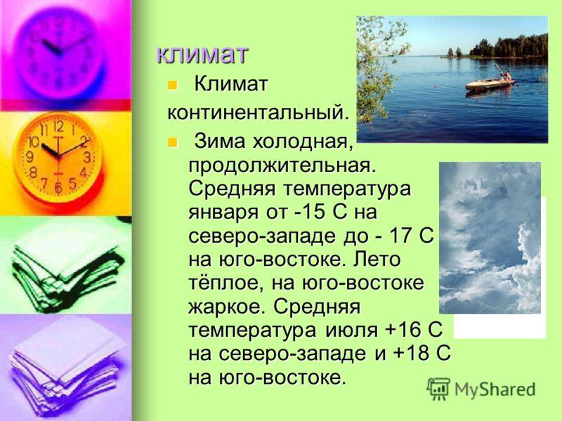 климат К Климат континентальный. З Зима холодная, продолжительная. Средняя температура января от -15 С на северо-западе до - 17 С на юго-востоке. Лето тёплое, на юго-востоке жаркое. Средняя температура июля +16 С на северо-западе и +18 С на юго-восто