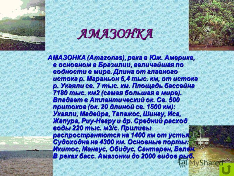 АМАЗОНКА АМАЗОНКА АМАЗОНКА (Amazonas), река в Юж. Америке, в основном в Бразилии, величайшая по водности в мире. Длина от главного истока р. Мараньон 6,4 тыс. км, от истока р. Укаяли св. 7 тыс. км. Площадь бассейна 7180 тыс. км2 (самая большая в мире