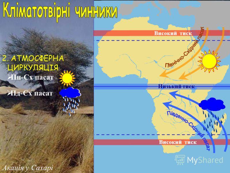 1. СОНЯЧНА РАДІАЦІЯ 140-200 ккал/см 2 на рік 21 березня, 23 вересня Акація у Сахарі Жаркий тепловий пояс Помірний