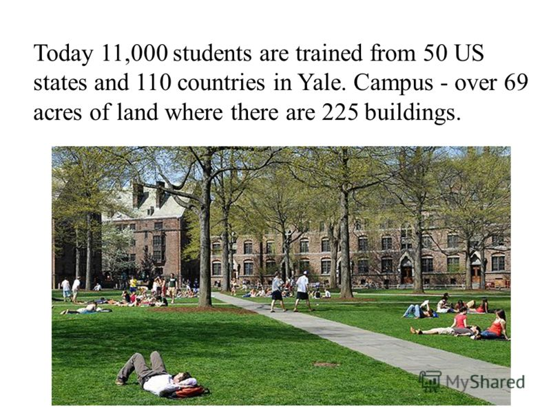 Today 11,000 students are trained from 50 US states and 110 countries in Yale. Campus - over 69 acres of land where there are 225 buildings.