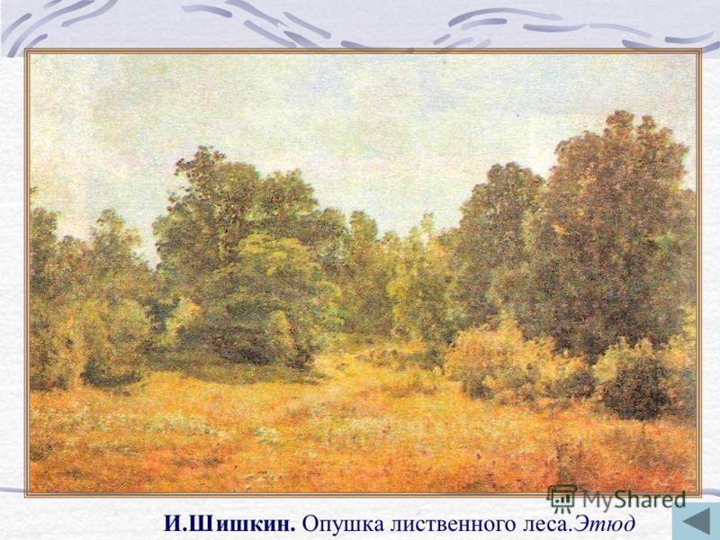 И.Шишкин. Опушка лиственного леса.Этюд