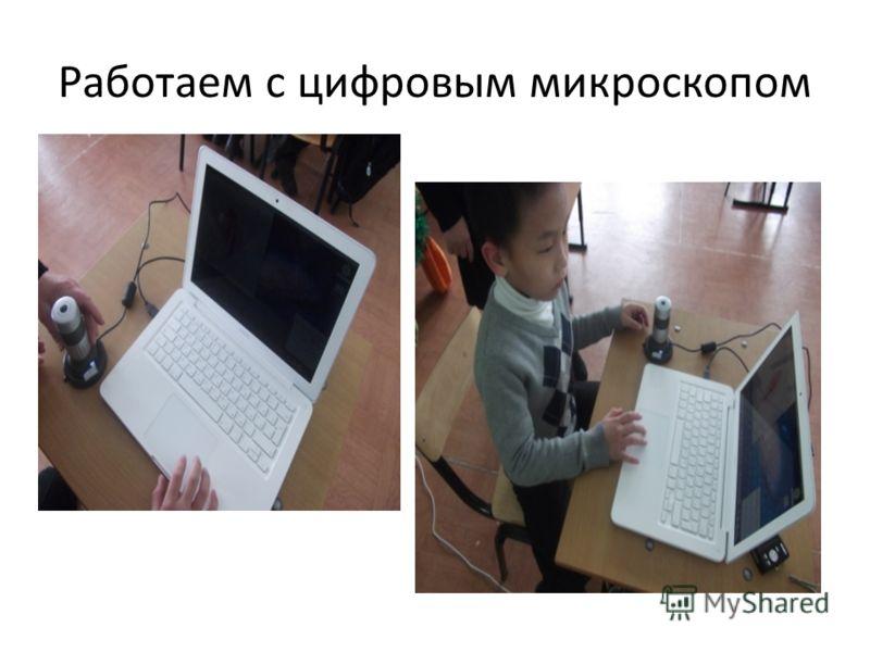 Работаем с цифровым микроскопом