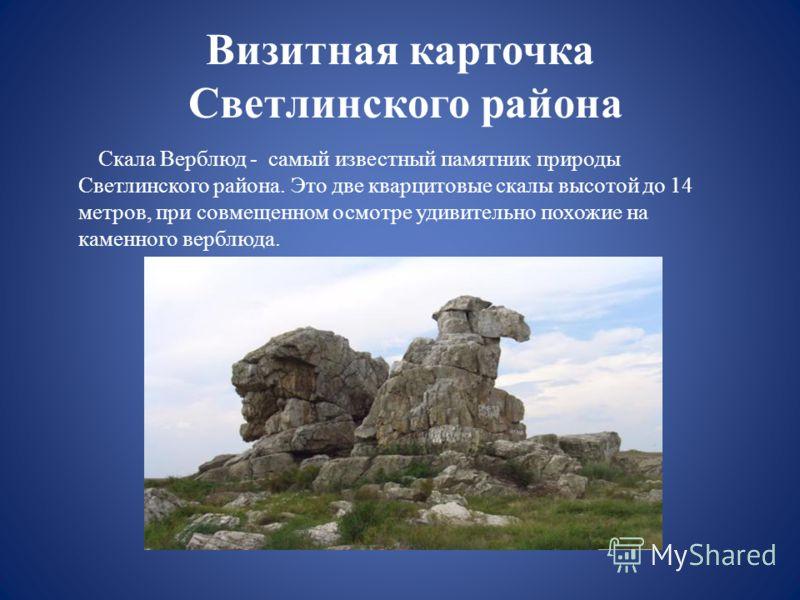 Визитная карточка Светлинского района Скала Верблюд - самый известный памятник природы Светлинского района. Это две кварцитовые скалы высотой до 14 метров, при совмещенном осмотре удивительно похожие на каменного верблюда.