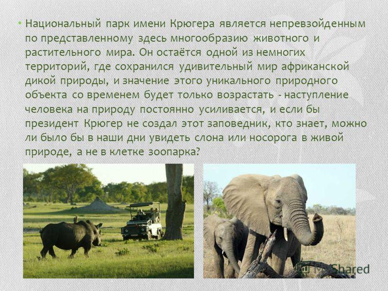 Национальный парк имени Крюгера является непревзойденным по представленному здесь многообразию животного и растительного мира. Он остаётся одной из немногих территорий, где сохранился удивительный мир африканской дикой природы, и значение этого уника